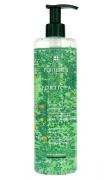 Rene Furterer FORTICEA Energizing Shampoo 600ml
